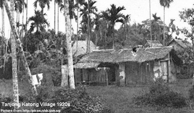 Prostitutes Coconut Creek